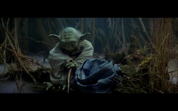 Yoda Waiting